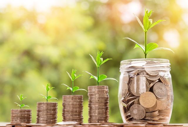 お金と植物の画像